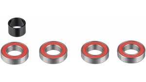Hub Bearing Set Rear (includes 4-6902) Rise 60 XD